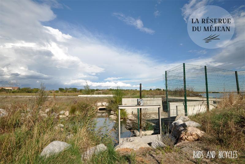 La réserve du Méjean près de Montpellier