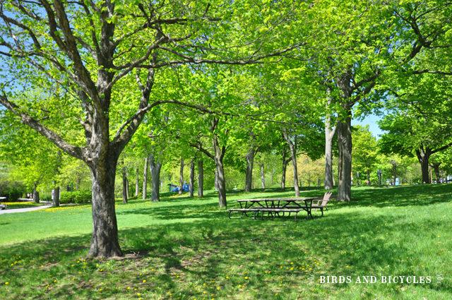 parc Jean Drapeau (5)