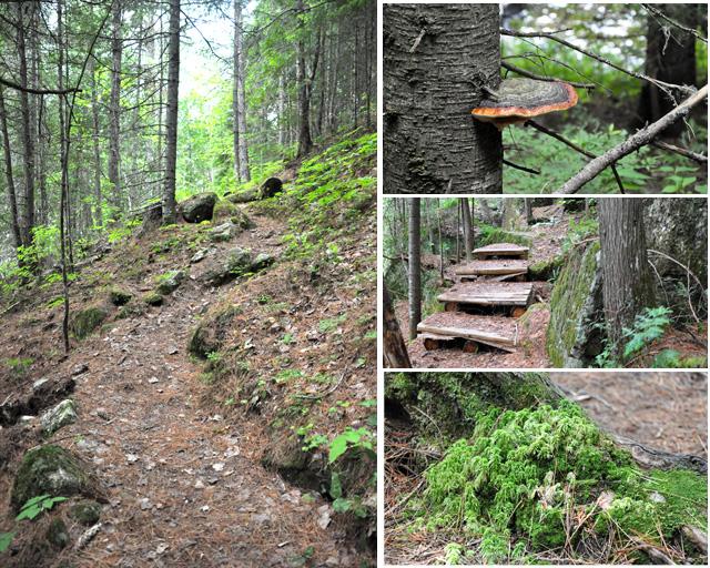 Mastigouche - Chemin des Six Chutes