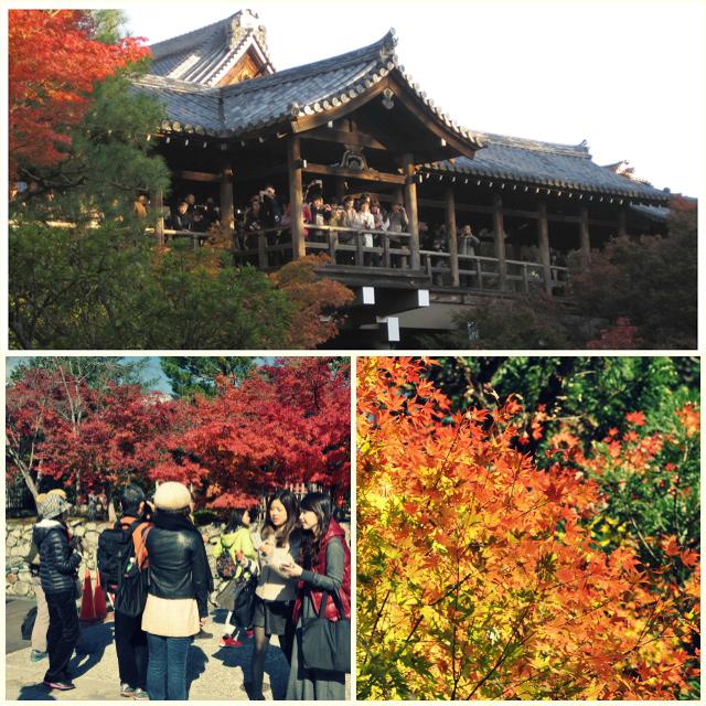 Japonais prenant en photo l'automne