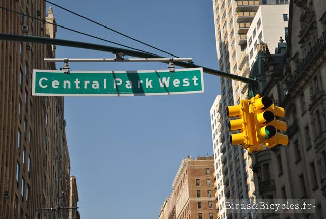 Central Park Street New-York