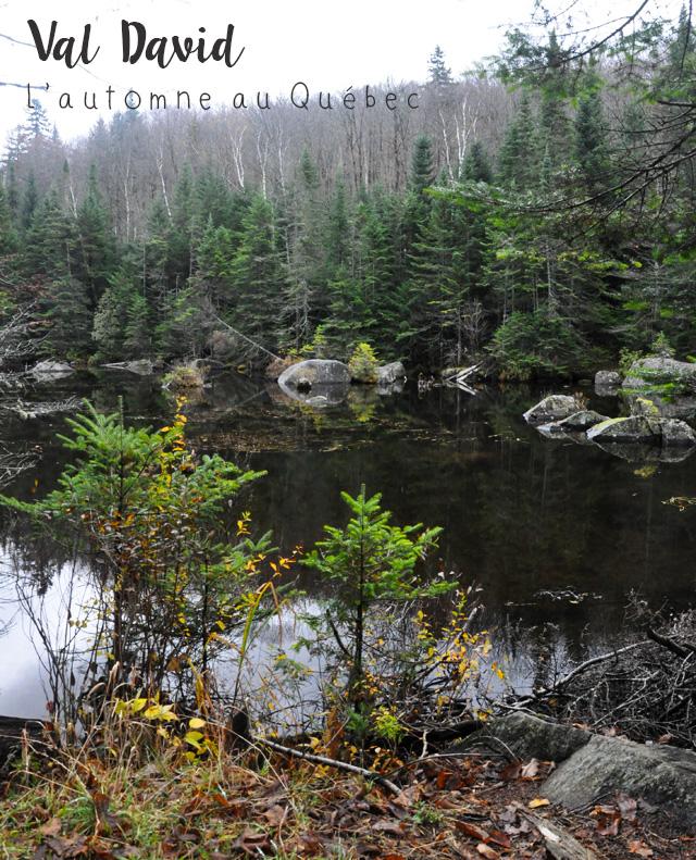 Au parc Val David Val Morin, au Québec!