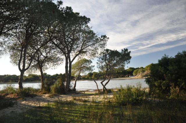 Balade-Montpellier-Etang-du-Ponant (11)