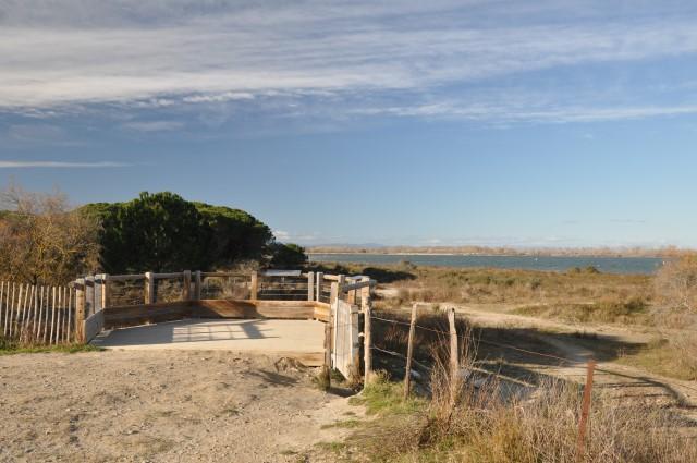 Sud de la France: Balade au bord d'un étang