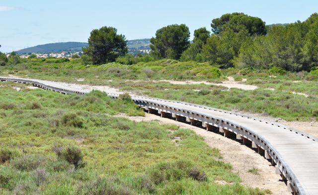 Autour des étangs de l'Hérault