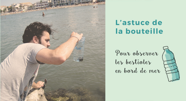 Observation d'animaux: L'astuce de la bouteille à la mer