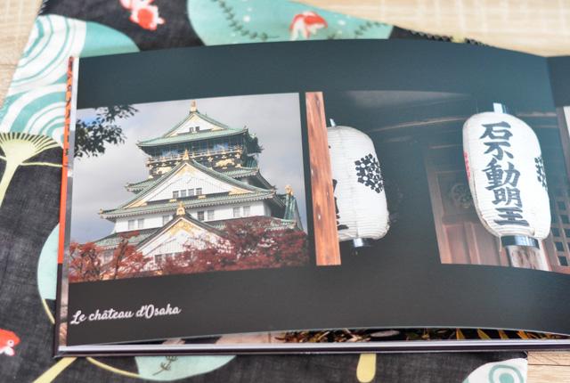 Le-château-d'Osaka