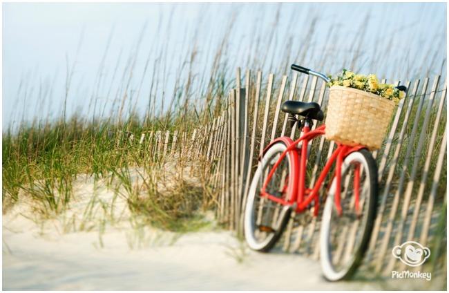 blog lifestyle féminin - birds & Bicycles