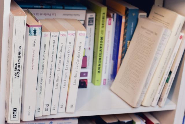 Ma PAL dans ma bibliothèque - Blog de conseils livres: romans avec des héroïnes fortes