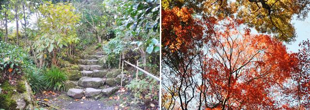 Gora parc - Que voir à Hakone
