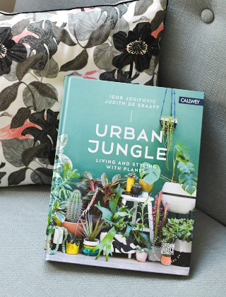 Urban Jungle: tendance déco