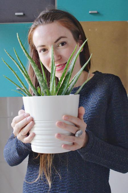 Aloe vera de salle de bain