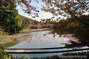Le jardin du temple Ryoan-ji à Kyoto
