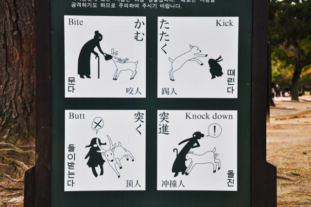 Panneau japonais : attention aux daims