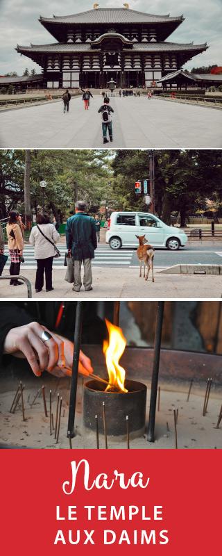 Voyage au Japon: Nara et son sanctuaire où vivent des daims en liberté #japon