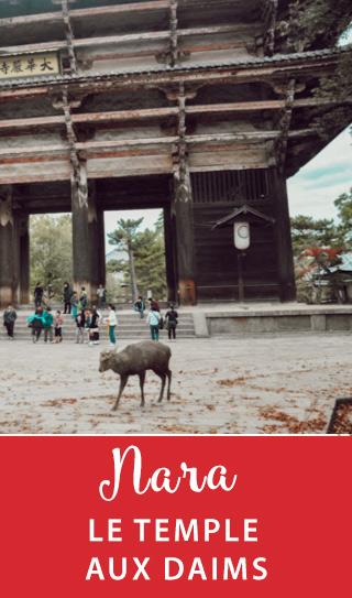 Voyage au Japon: découverte en photos de Nara et de son sanctuaire où des daims évoluent en liberté #japon