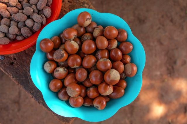Les noix de karité - fairtrade Ghana