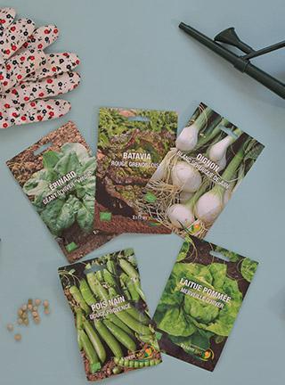Jardinage urbain: mes plantations en cours & prévues