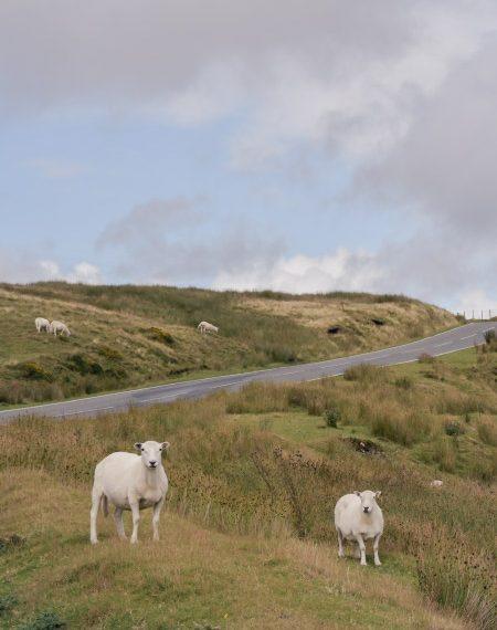 Itinéraire voyage Pays de Galles Angleterre