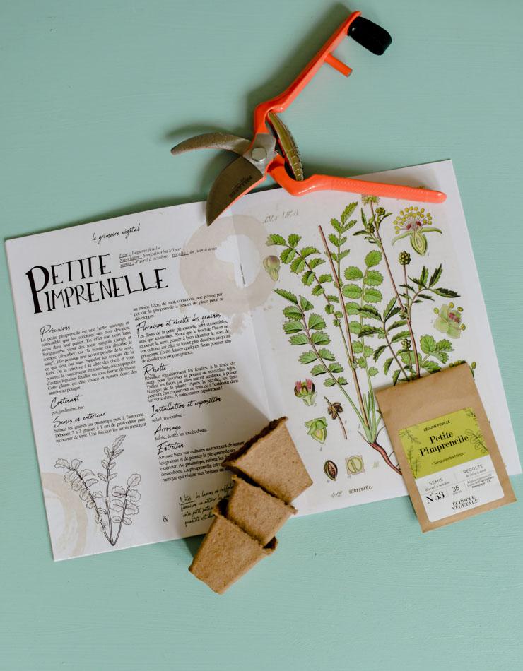 Echoppe végétale: la box de jardinage et de lifestyle slow