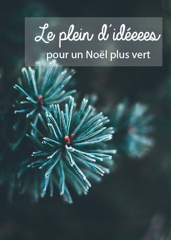 Des pistes pour un Noël plus durable. Des pistes pour un Noël plus durable. Un petit geste écolo à Noël, voilà une bonne idée. Mais par où commencer? Furoshiki, sapin à louer, papier recyclé: en voilà des idées.