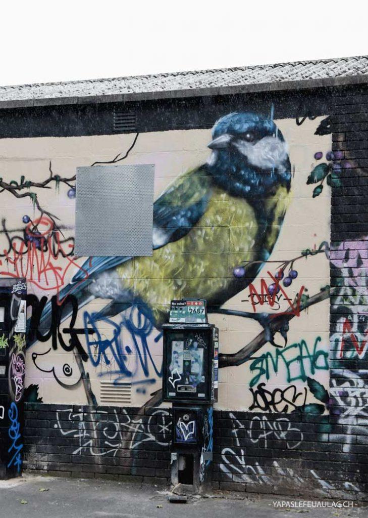 Mésange bleue: street art - week-end à Bristol