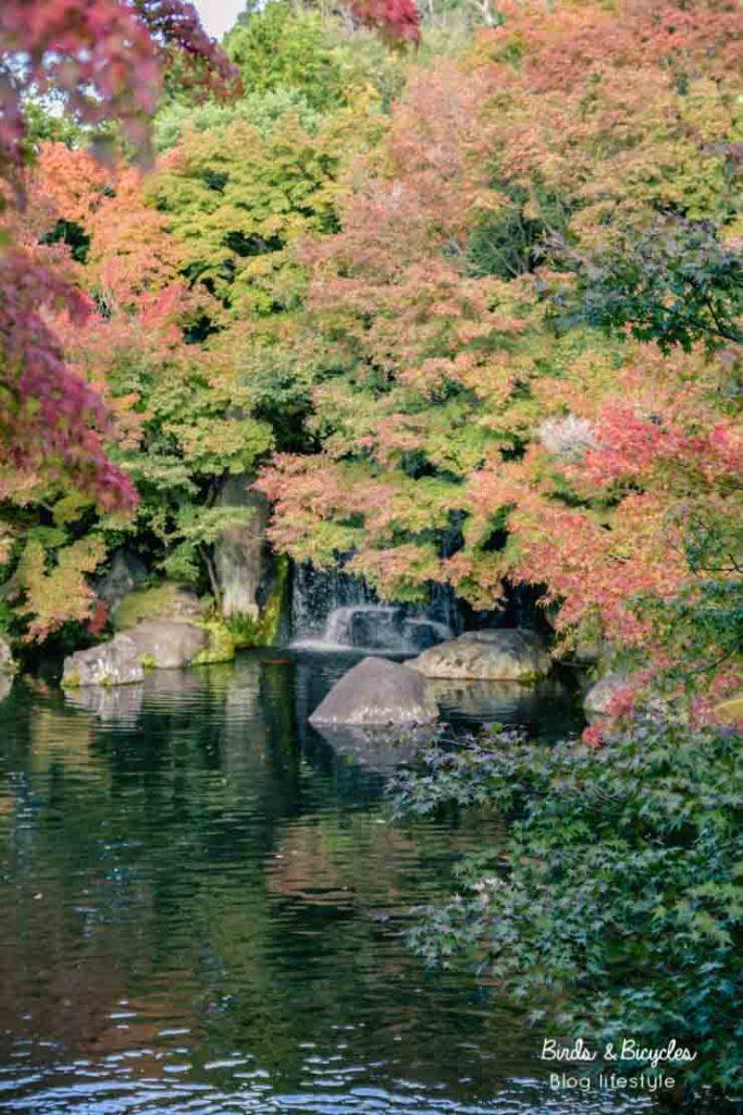 Jardin japonais: le Koko-en à Himeji