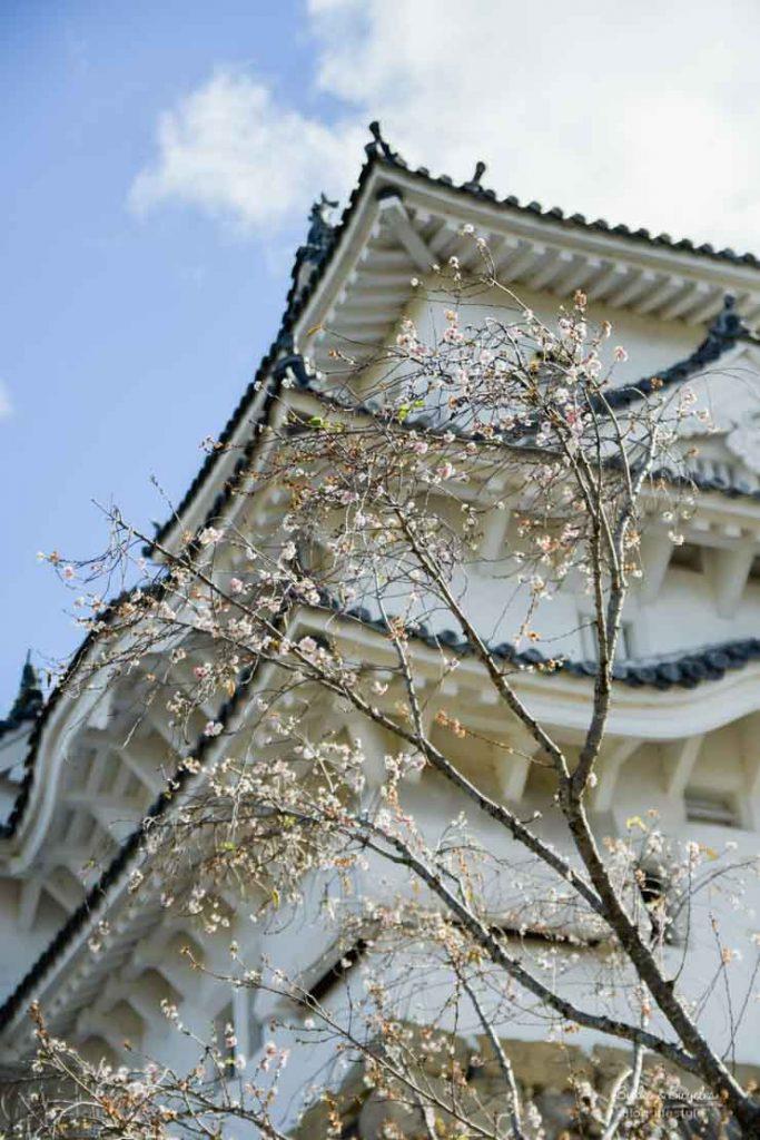 Visiter Himeji, que voir après  le Château
