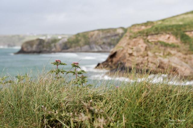 Sud du Pays de Galles: la côte