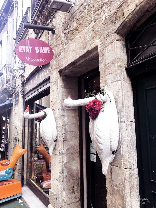 Bonnes adresses à Montpellier sur le blog lifestyle Birds & Bicycles
