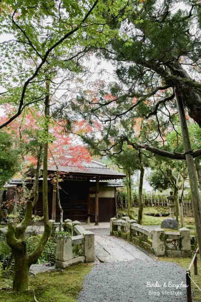 Visite sur le chemin de la philosophie à Kyoto: où s'arrêter