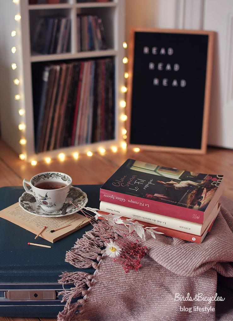 Deux idées de romans à lire sur le blog Birds & Bicycles - romans féministes, romans sur des histoires de femmes, roman sur la culture amérindienne, roman new-yorkais, auteure suisse
