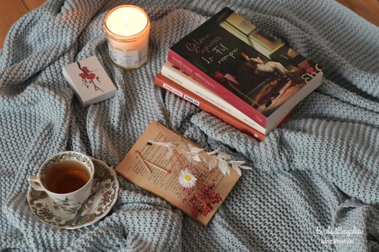 Bookstagram - idées de romans de novembre à lire durant le confinement - Crazy Brave et le Fil Rompu