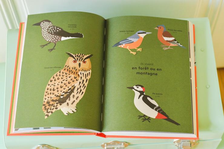 Ornithorama: un guide entre observation de la nature & graphisme