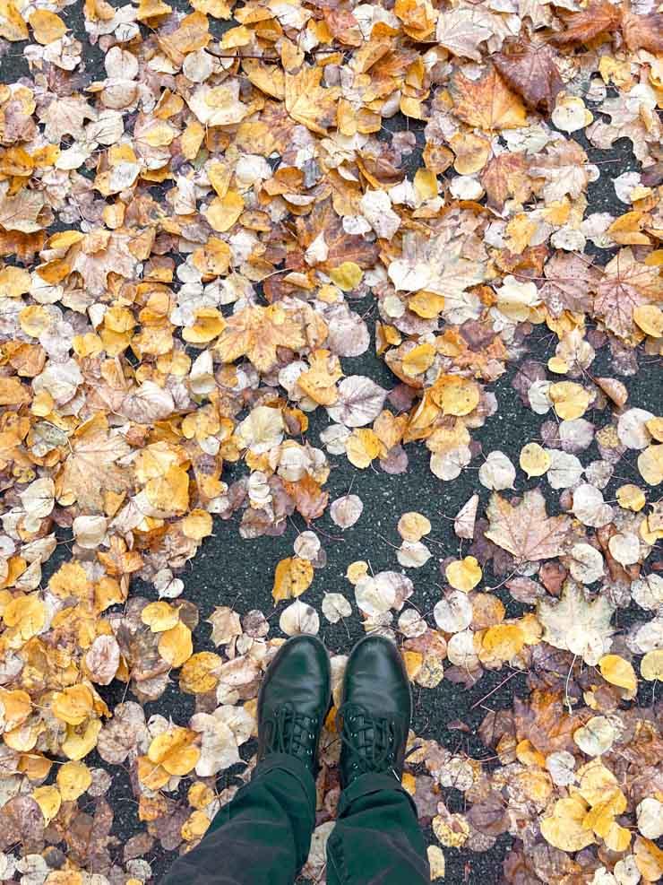L'automne à Mulhouse