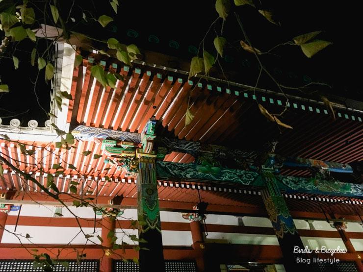 Expérience à Kyoto: Visiter le temple Eikan-do de nuit