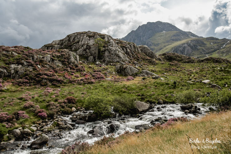 Road-trip: découvrir Wales étape par étape! Ici Snowdonia