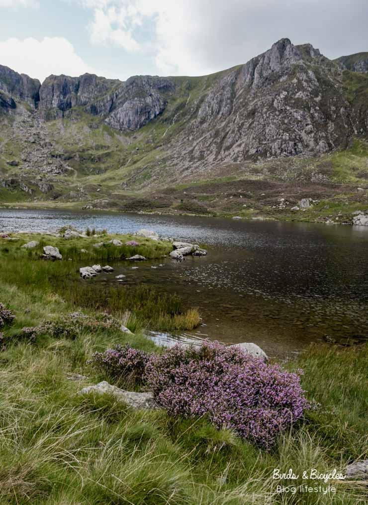 Lac de montagne - Wales