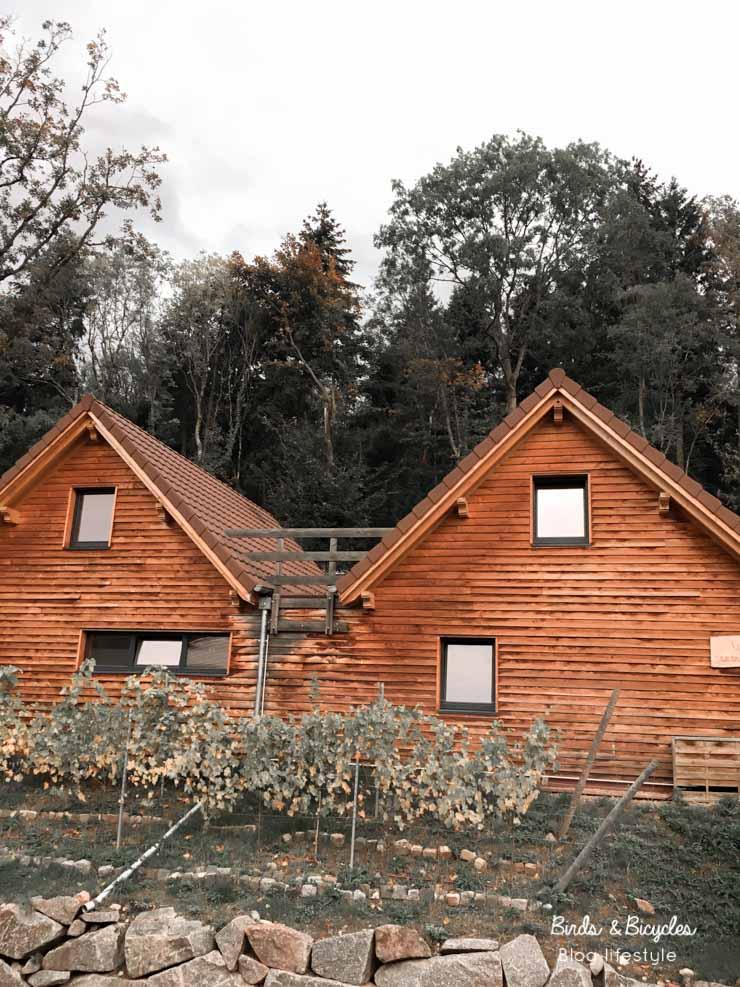 Mon avis sur le domaine du Hirtz en Alsace, un superbe spa