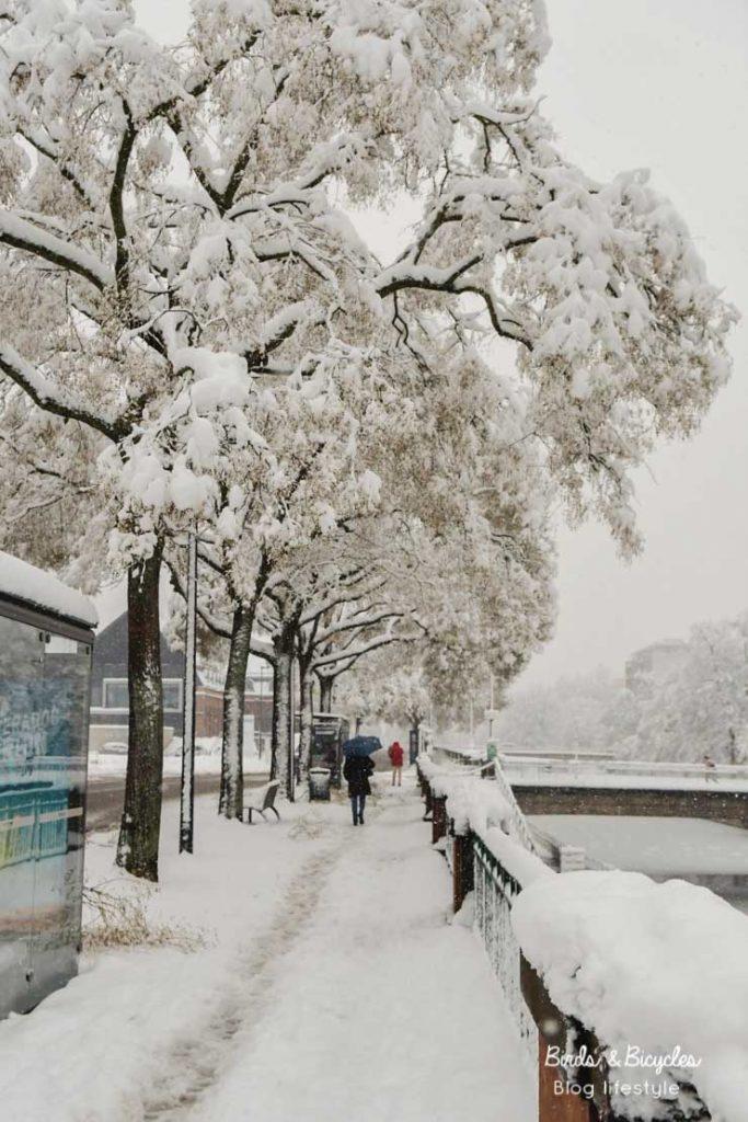 Canal sous la neige - Mulhouse