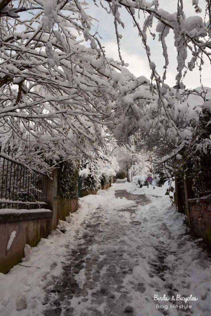 Quartier Rebberg de Mulhouse sous la neige