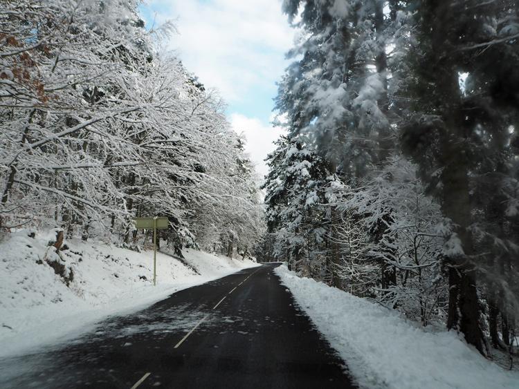 Week-end dans les Vosges: 11 activités à tenter dans le massif