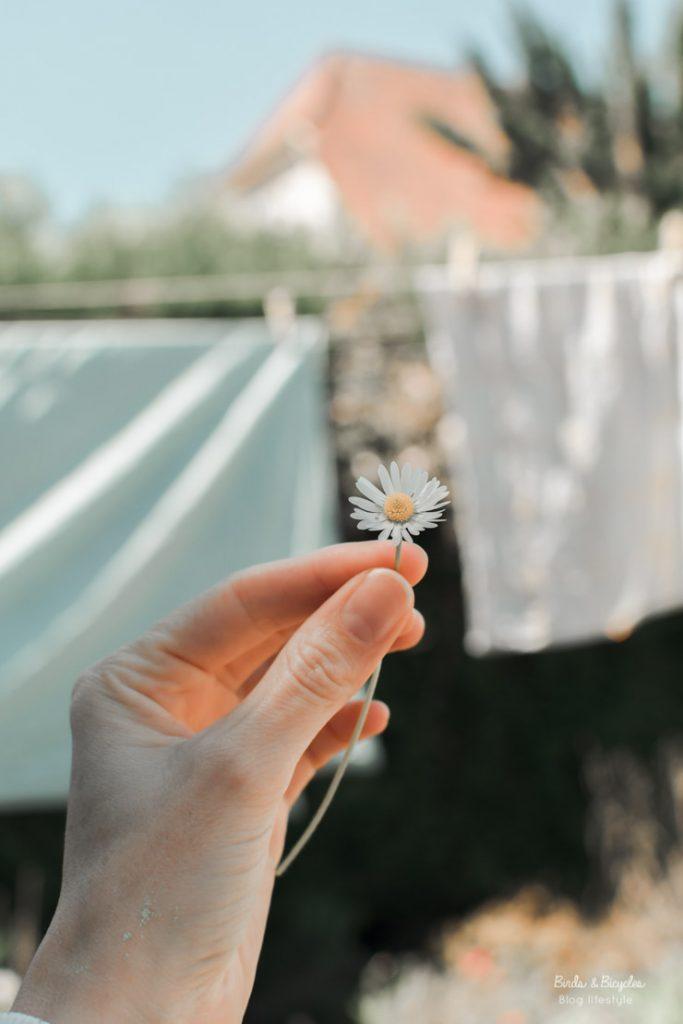 Jour de lessive sur le blog!