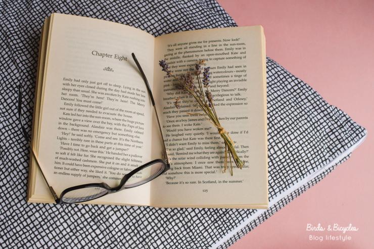Romances à lire: conseils sur le blog Birds & Bicycles